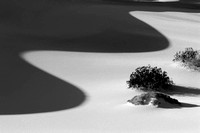 Death Valley - Black & White