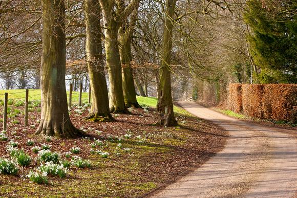 St Pauls Walden Bury drive